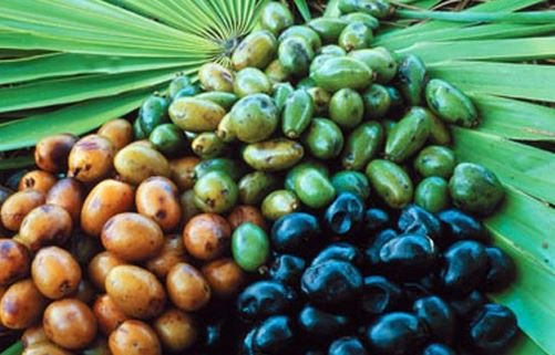 Does saw palmetto stop hair loss